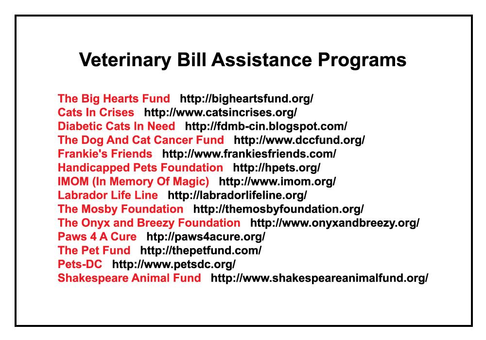 veterinary assistance bill programs