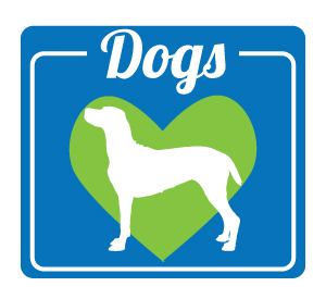 dogs for adoption maine